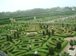 Jardim do amor